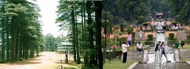 कश्मीरमा पर्यटकलाई स्वागत गर्ने तयारी